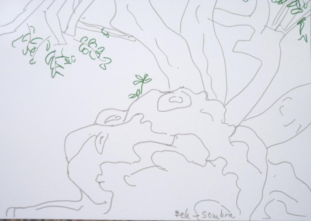 lisbon_tree1