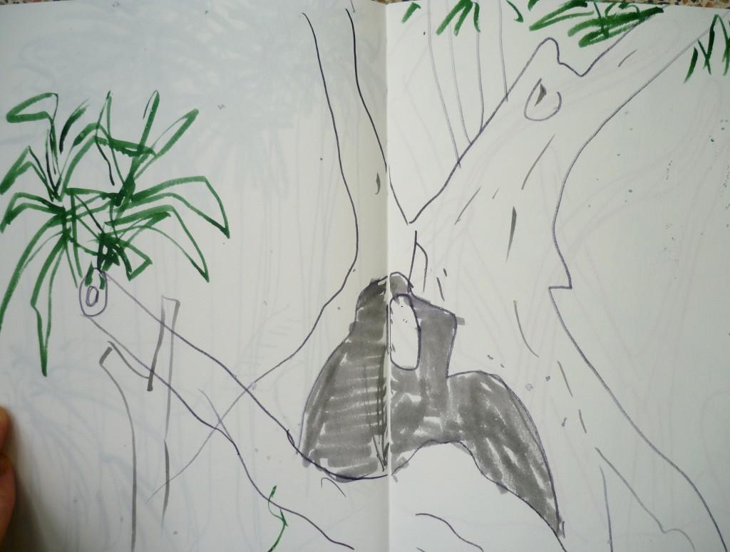 lisbon_tree2